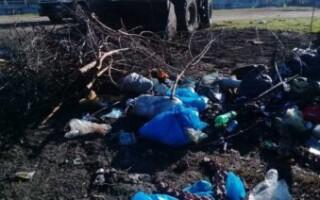 Gregorio de Laferrere: llevan a cabo un operativo de limpieza de arroyos y espacios públicos
