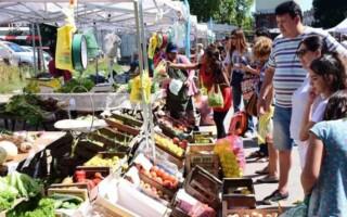 """Ferias Itinerantes: """"Al no haber intermediarios, sube la calidad y bajan los precios"""", destacan desde Desarrollo Social"""