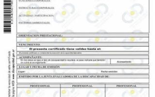Se prorrogan los vencimientos de Certificados de Discapacidad y Símbolo Internacional de Acceso por un año