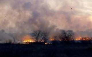 Gregorio de Laferrere: preocupan los reiterados incendios en la Reserva Natural