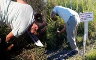 Gregorio de Laferrere: destrozos en la Reserva Natural después de una fiesta clandestina