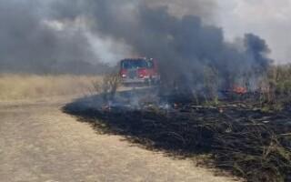 Un incendio afectó varias hectáreas en Gregorio de Laferrere y sospechan una acción intencional