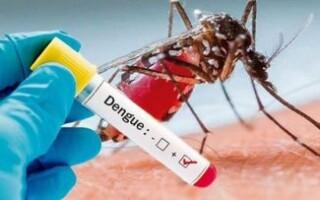 Cómo se prepara el Oeste para combatir al dengue, en pleno rebrote del coronavirus