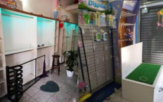 Virrey del Pino: desvalijaron un local de indumentaria para bebés y niños