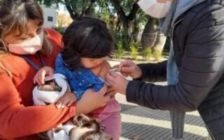 La vacunación de calendario se lleva a cabo en cuatro localidades matanceras