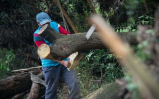 Ciudad Evita: nuevo operativo de saneamiento de la ACuMaR en la Reserva Natural